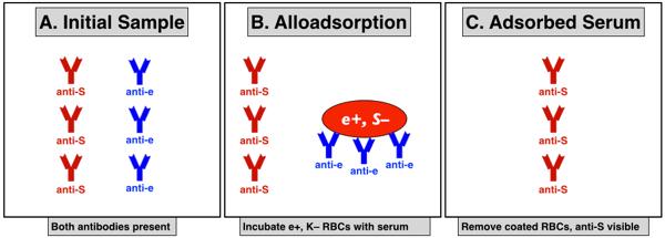 Schéma explicatif de l'allo-adsorption