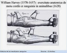 Recherche de William Harvey