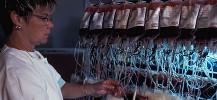 photo de la pr�paration des produits sanguins labiles avant la transfusion de sang