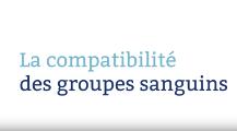 La compatibilité des groupes sanguins